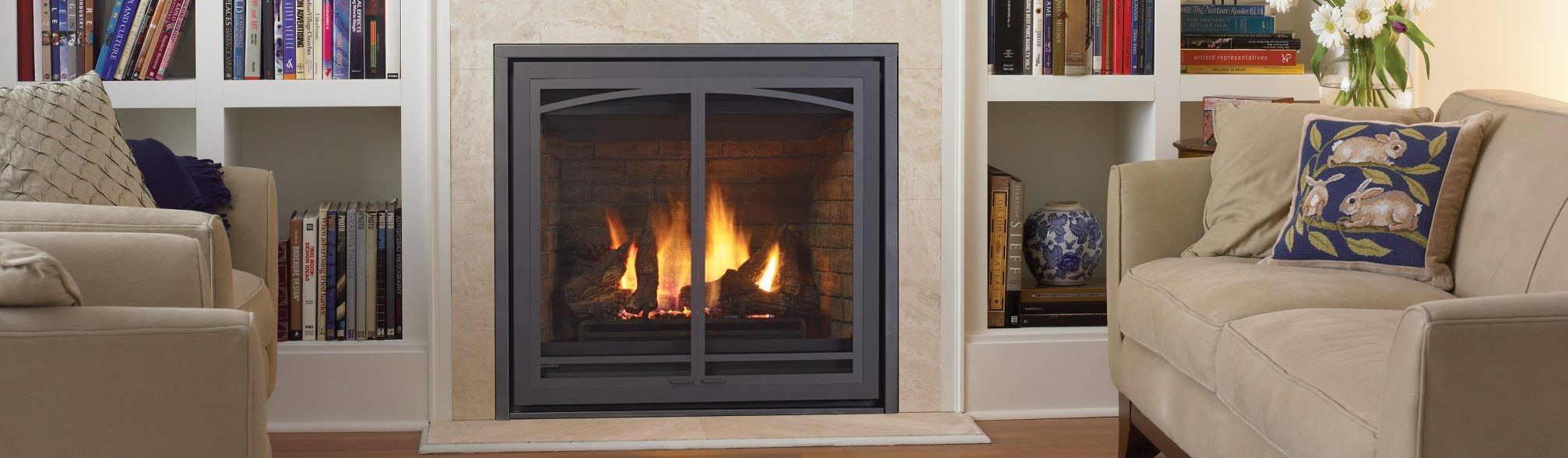 gas fireplace insert installs in Washington D.C